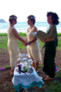 civil union ceremony in hawaii